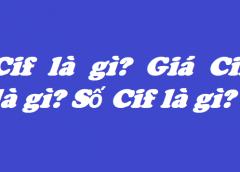 Cif là gì? Giá Cif là gì? Số Cif là gì?